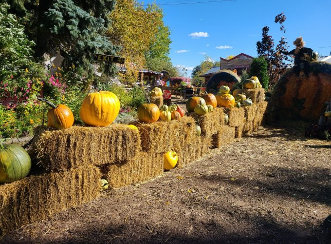 25 Things to Do in October