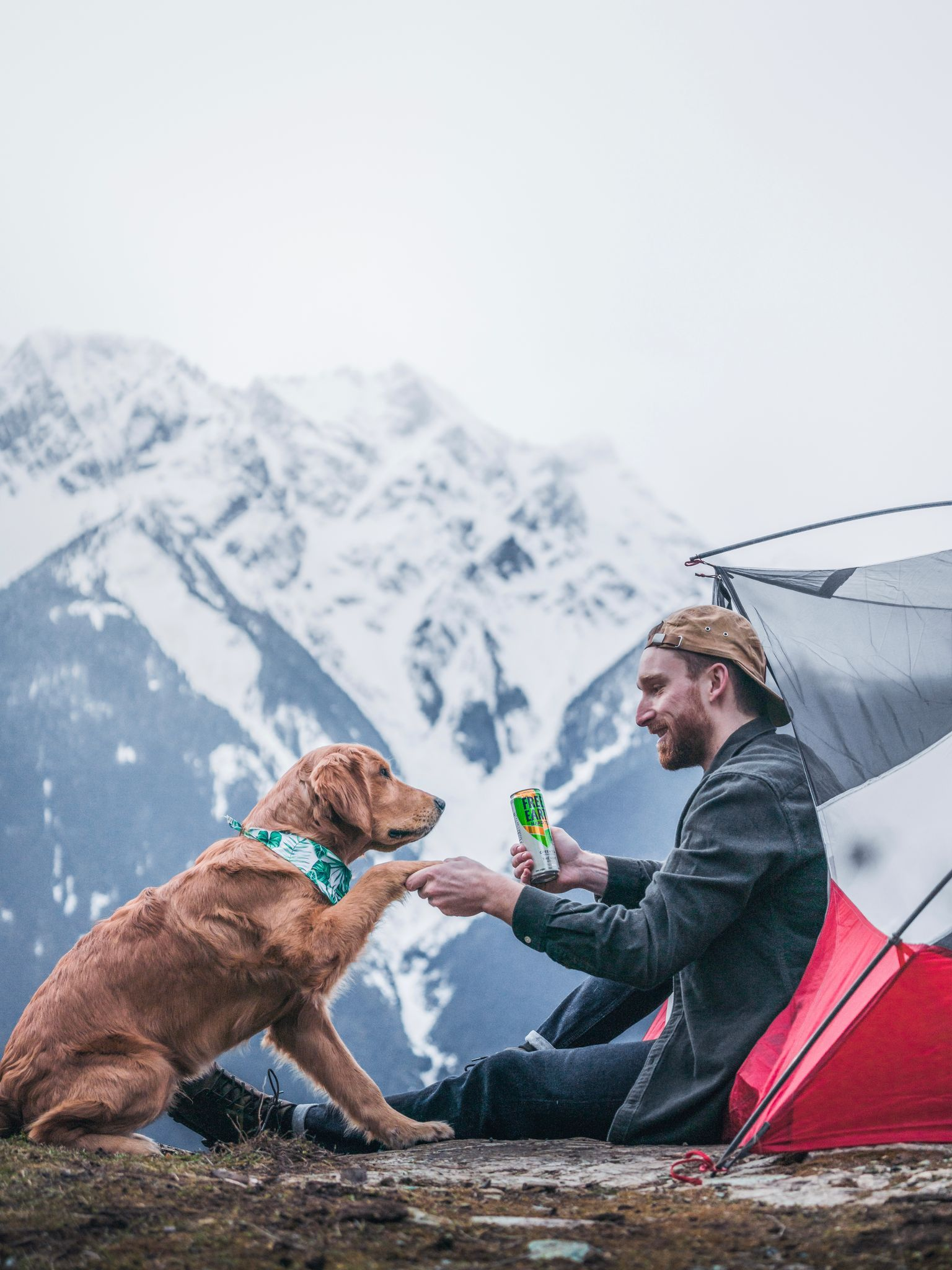 man camping on mountain with dog