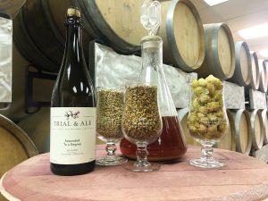 Beer_Trial&Ale_Bottle_Grains_Hops