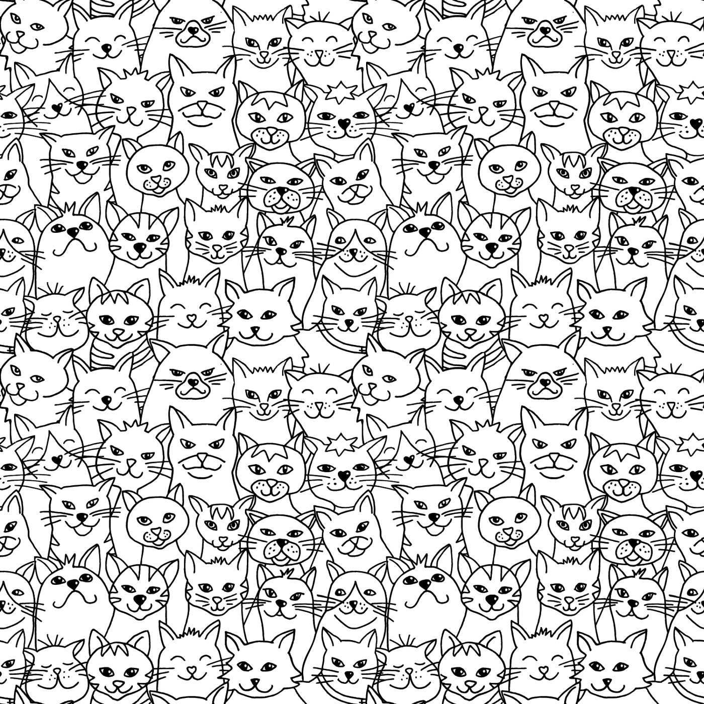 Detours-Cats.jpg