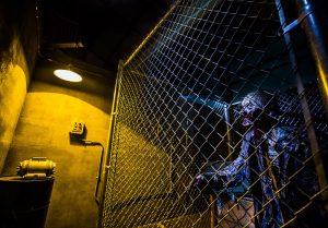 Deadmonton Haunted House and Halloween Store, spooky image