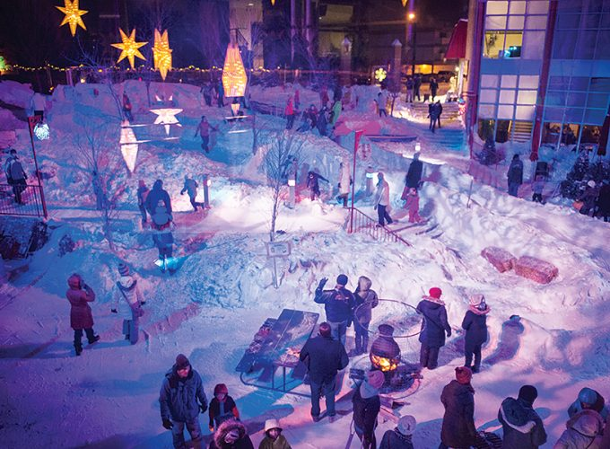 5 Things To Do In Edmonton: January 27 to 31