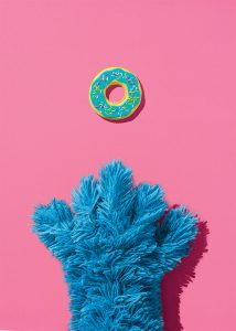 Doughnut shaped cookie