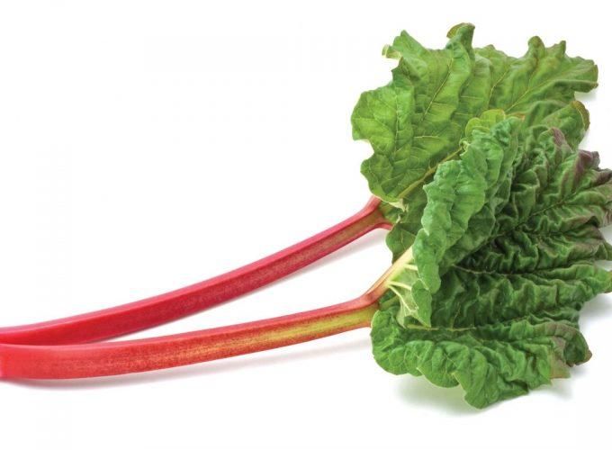Ingredient: Rhubarb