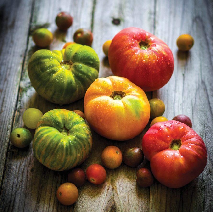 Ingredient: Heirloom Tomatoes