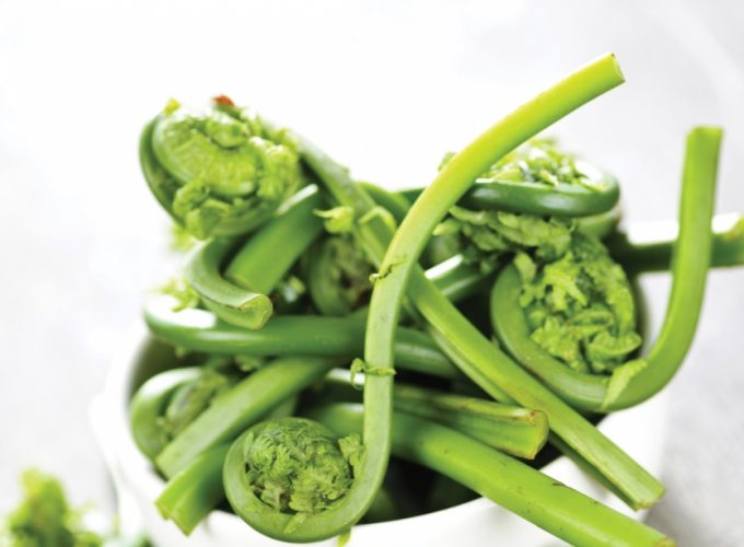Ingredient: Fiddleheads