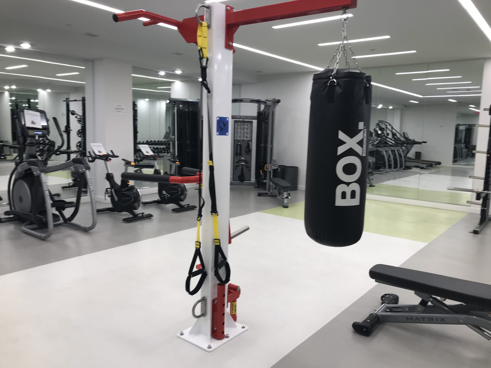 Have a bout in the gym