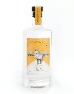InTheBag_Gin_1.jpg
