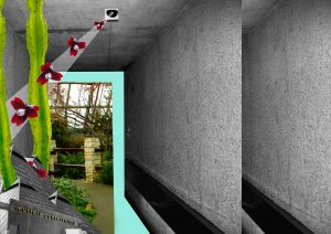 Spaces-Muttart_rodrigo