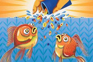WEB-WordsNPics_Fish-Feature-Credit-Emily-Chu