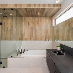 Interior en suite; glass-wall shower divided from sunk-in tub; light speckled tile floor and tub mount; light wood panel walls; black sink and full-width mirror on right