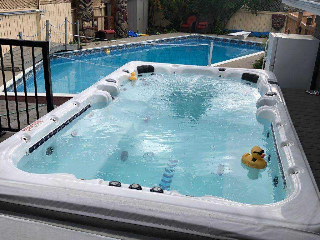 Wolf-pool.jpg