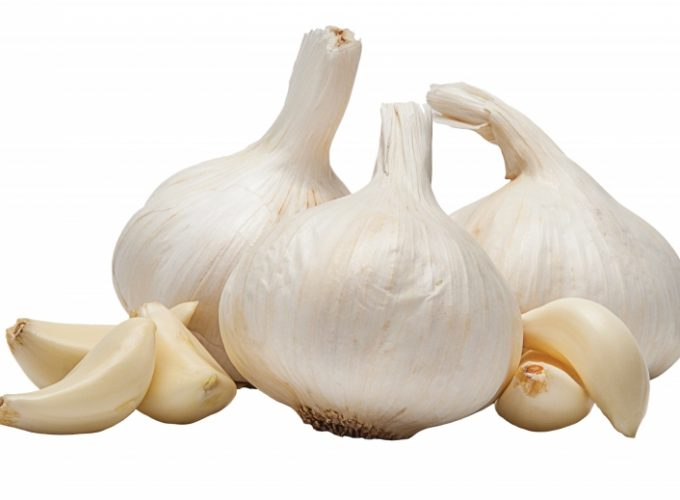 Garlic Cookery