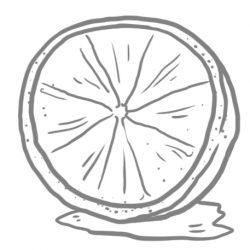FOR-WEB_lemon.jpg