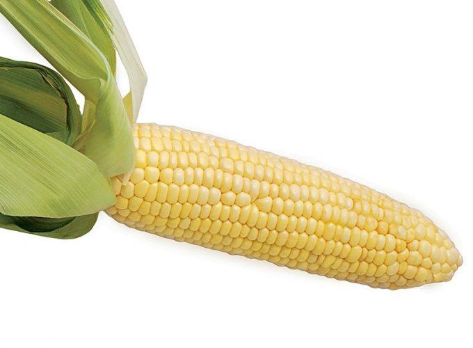 The Ingredient: Corn