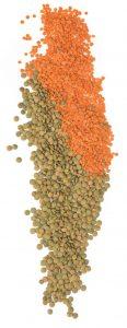 lentils-october-2-c0279e82