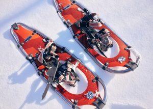 snowshoe-1983134_1920