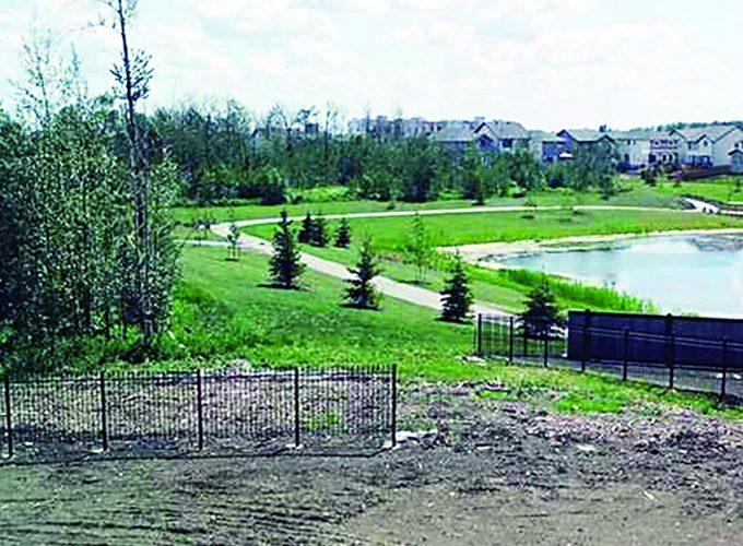 Edmonton's Best Neighbourhoods: No. 6 to 10